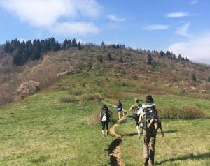 Company and Small Group Wellness Adventures
